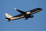 twining07さんが、羽田空港で撮影したスターフライヤー A320-214の航空フォト(写真)