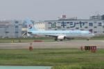 職業旅人さんが、福岡空港で撮影した大韓航空 737-9B5の航空フォト(写真)