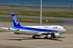 JA946さんが、羽田空港で撮影した全日空 A320-211の航空フォト(写真)