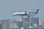 そらまめさんが、福岡空港で撮影したANAウイングス DHC-8-402Q Dash 8の航空フォト(写真)