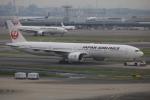 msrwさんが、羽田空港で撮影した日本航空 777-346/ERの航空フォト(写真)