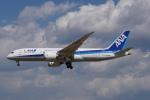 神宮寺ももさんが、成田国際空港で撮影した全日空 787-881の航空フォト(写真)