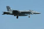 tomoMTさんが、厚木飛行場で撮影したアメリカ海軍 F/A-18E Super Hornetの航空フォト(写真)