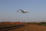 saku39さんが、成田国際空港で撮影した全日空 787-8 Dreamlinerの航空フォト(写真)