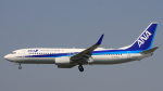 Cassiopeia737さんが、高知空港で撮影した全日空 737-881の航空フォト(写真)