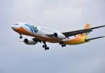 mojioさんが、成田国際空港で撮影したセブパシフィック航空 A330-343Eの航空フォト(写真)