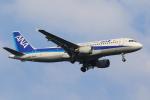 せぷてんばーさんが、羽田空港で撮影した全日空 A320-211の航空フォト(写真)