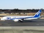 ja625aさんが、成田国際空港で撮影した全日空 787-8 Dreamlinerの航空フォト(写真)