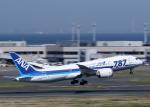 tuckerさんが、羽田空港で撮影した全日空 787-8 Dreamlinerの航空フォト(写真)