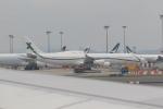 ぽんさんが、香港国際空港で撮影したエアXチャーター A340-312の航空フォト(写真)