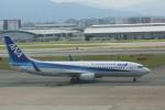 meijeanさんが、福岡空港で撮影した全日空 737-881の航空フォト(写真)