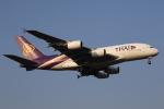 MOHICANさんが、成田国際空港で撮影したタイ国際航空 A380-841の航空フォト(写真)