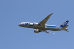 airdrugさんが、成田国際空港で撮影した全日空 787-8 Dreamlinerの航空フォト(写真)