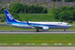PASSENGERさんが、長崎空港で撮影した全日空 737-881の航空フォト(写真)