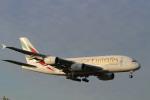 パピヨンさんが、成田国際空港で撮影したエミレーツ航空 A380-861の航空フォト(写真)