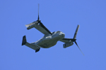 tsubameさんが、岩国空港で撮影したアメリカ海兵隊 MV-22Bの航空フォト(写真)
