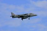 tsubameさんが、岩国空港で撮影したアメリカ海兵隊 AV-8B Harrier IIの航空フォト(写真)