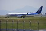 tsubameさんが、岩国空港で撮影した全日空 737-881の航空フォト(写真)