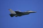 tsubameさんが、岩国空港で撮影したアメリカ空軍 F-16CM-50-CF Fighting Falconの航空フォト(写真)