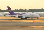 Koenig117さんが、成田国際空港で撮影したタイ国際航空 A380-841の航空フォト(写真)