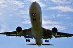 tsubasa0423さんが、伊丹空港で撮影した日本航空 767-346/ERの航空フォト(写真)