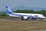 Wings Flapさんが、広島空港で撮影した全日空 787-8 Dreamlinerの航空フォト(写真)