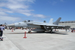 Wings Flapさんが、岩国空港で撮影したアメリカ海軍 F/A-18E Super Hornetの航空フォト(写真)