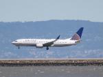 職業旅人さんが、サンフランシスコ国際空港で撮影したユナイテッド航空 737-824の航空フォト(写真)