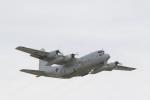 とらとらさんが、厚木飛行場で撮影した海上自衛隊 C-130Rの航空フォト(写真)
