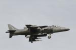 とらとらさんが、厚木飛行場で撮影したアメリカ海兵隊 AV-8B Harrier II+の航空フォト(写真)