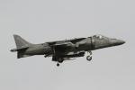 とらとらさんが、厚木飛行場で撮影したアメリカ海兵隊 AV-8B(R) Harrier II+の航空フォト(写真)