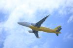 masakazuさんが、関西国際空港で撮影したバニラエア A320-216の航空フォト(写真)
