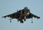 new_2106さんが、岩国空港で撮影したアメリカ海兵隊 AV-8B Harrier IIの航空フォト(写真)