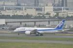 hareotokoさんが、羽田空港で撮影した全日空 787-881の航空フォト(写真)