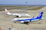 きったんさんが、中部国際空港で撮影した全日空 737-781の航空フォト(写真)