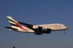 MOHICANさんが、成田国際空港で撮影したエミレーツ航空 A380-861の航空フォト(写真)