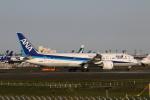 MOHICANさんが、成田国際空港で撮影した全日空 787-9の航空フォト(写真)