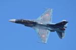 hideohさんが、岩国空港で撮影した航空自衛隊 F-2Bの航空フォト(写真)