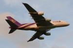 JA882Aさんが、成田国際空港で撮影したタイ国際航空 A380-841の航空フォト(写真)