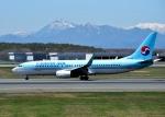 バーダーさんさんが、新千歳空港で撮影した大韓航空 737-8LHの航空フォト(写真)
