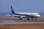動物村猫君さんが、大分空港で撮影した全日空 A321-131の航空フォト(写真)