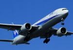 Espace77さんが、羽田空港で撮影した全日空 777-381/ERの航空フォト(写真)
