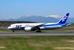 バーダーさんさんが、新千歳空港で撮影した全日空 787-881の航空フォト(写真)
