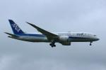 resocha747さんが、成田国際空港で撮影した全日空 787-881の航空フォト(写真)
