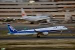 妄想竹さんが、羽田空港で撮影した全日空 A321-211の航空フォト(写真)
