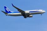 GOOSEMAN777さんが、羽田空港で撮影した全日空 737-881の航空フォト(写真)