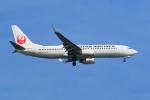 GOOSEMAN777さんが、羽田空港で撮影した日本航空 737-846の航空フォト(写真)
