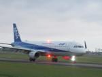 flyflygoさんが、高知空港で撮影した全日空 A321-211の航空フォト(写真)