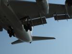 笹舟船頭さんが、長崎空港で撮影したロシア航空 Il-96-300の航空フォト(写真)
