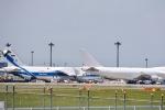 shiraponさんが、成田国際空港で撮影したヴォルガ・ドニエプル航空 An-124-100 Ruslanの航空フォト(写真)